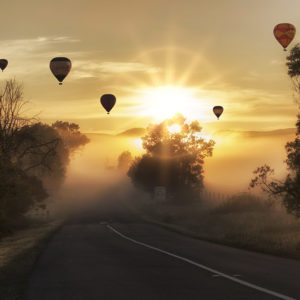 Hot Air Balloons at Sunrise